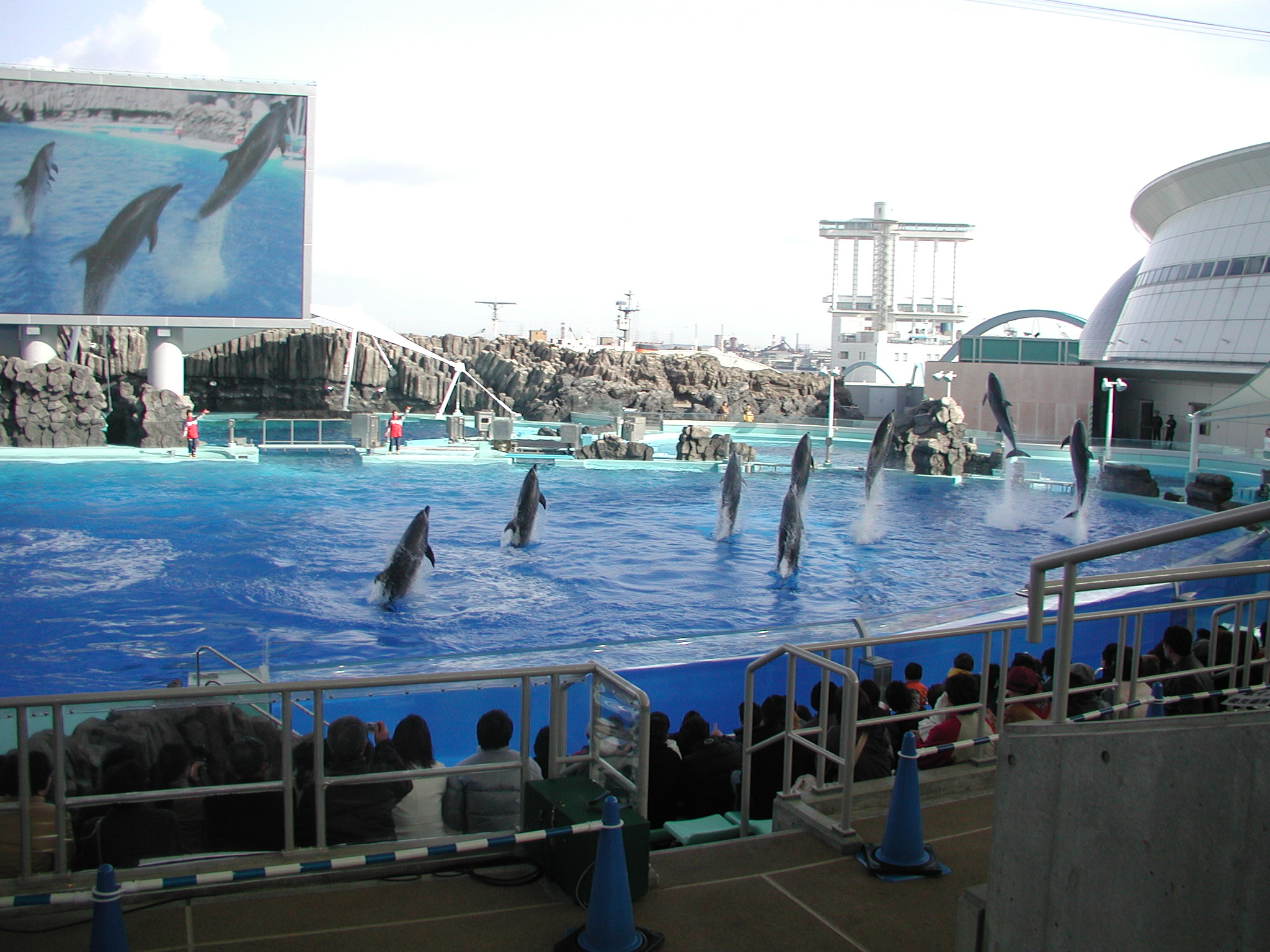Port of Nagoya Public Aquarium - Aquarium in Nagoya ...