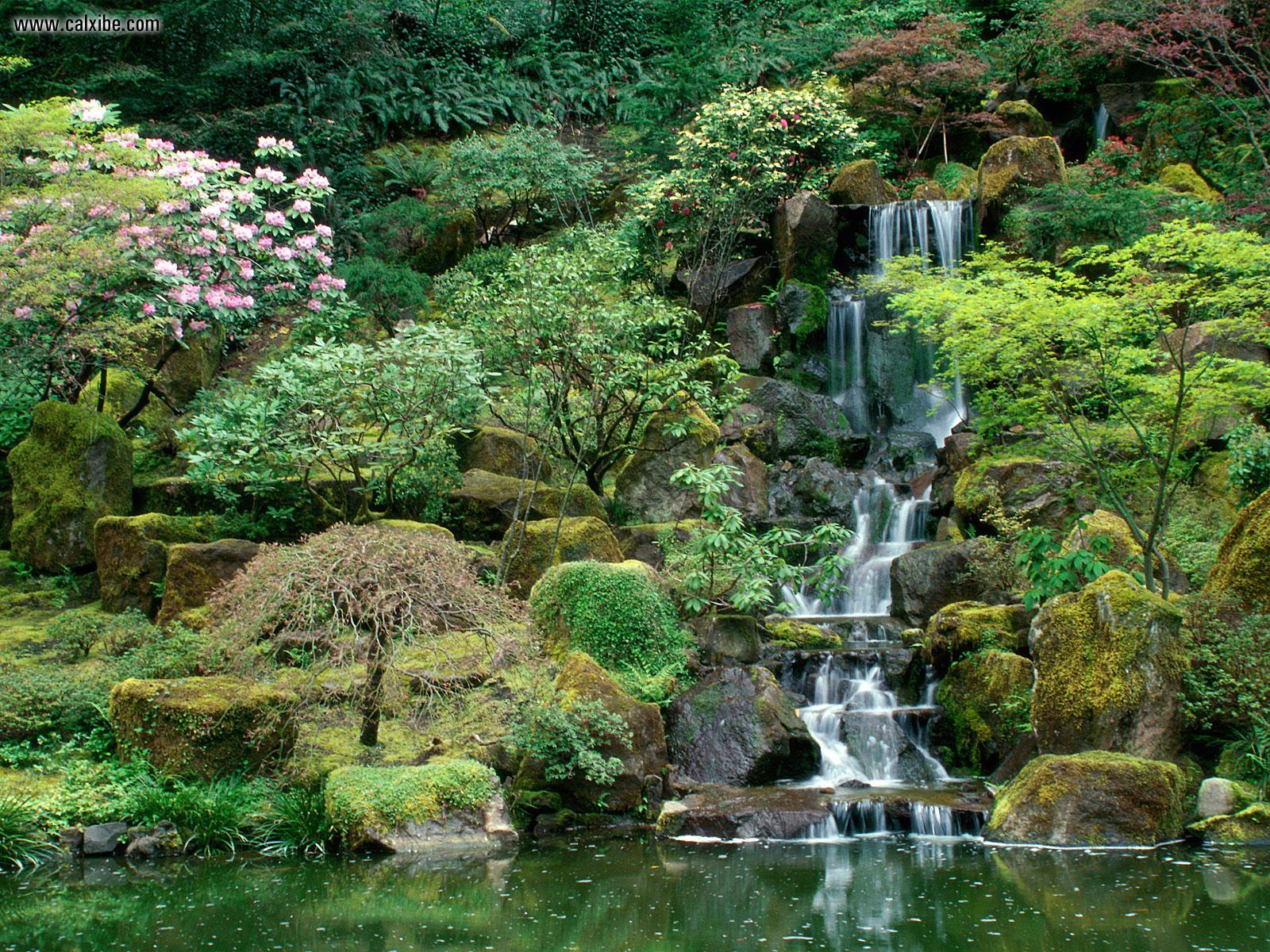 Portland japanese garden botanic garden in portland for The water garden