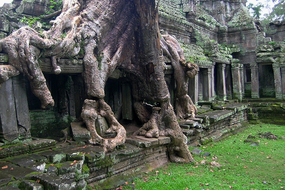 Preah Khan - Covered with Roots - Preah Khan