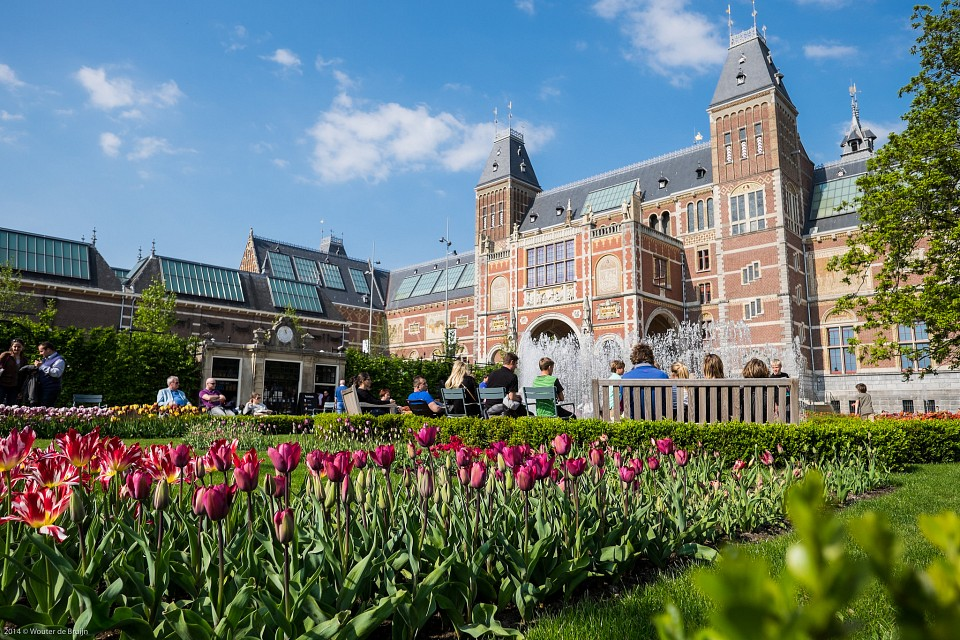 Tulips at the Rijksmuseum's garden - Rijksmuseum