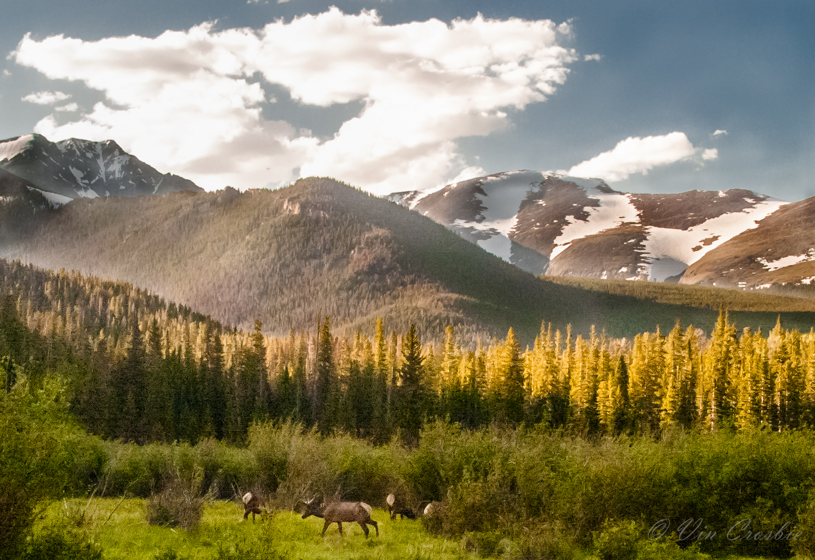 Rocky Mountain National Park Hotels Nearby
