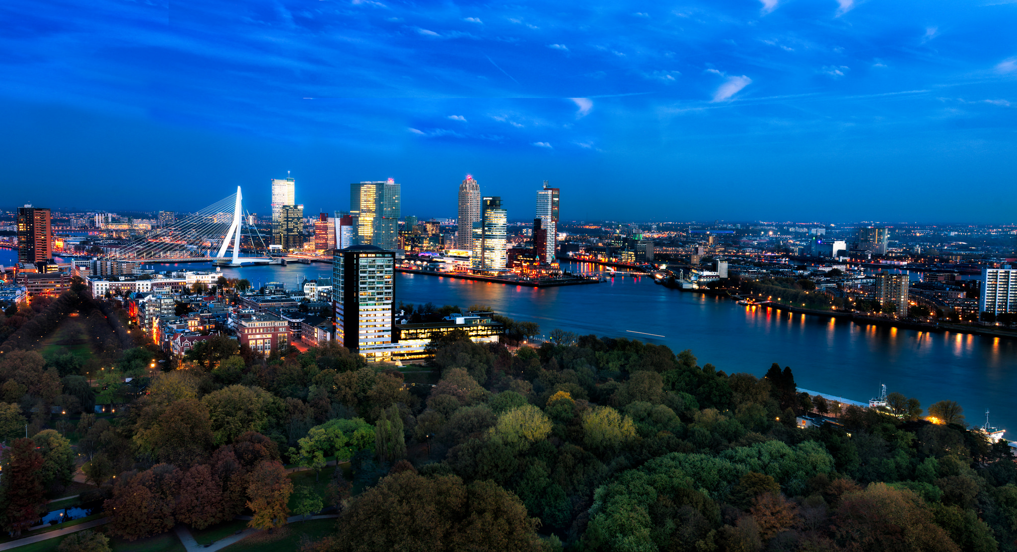 Rotterdam's skyline from above