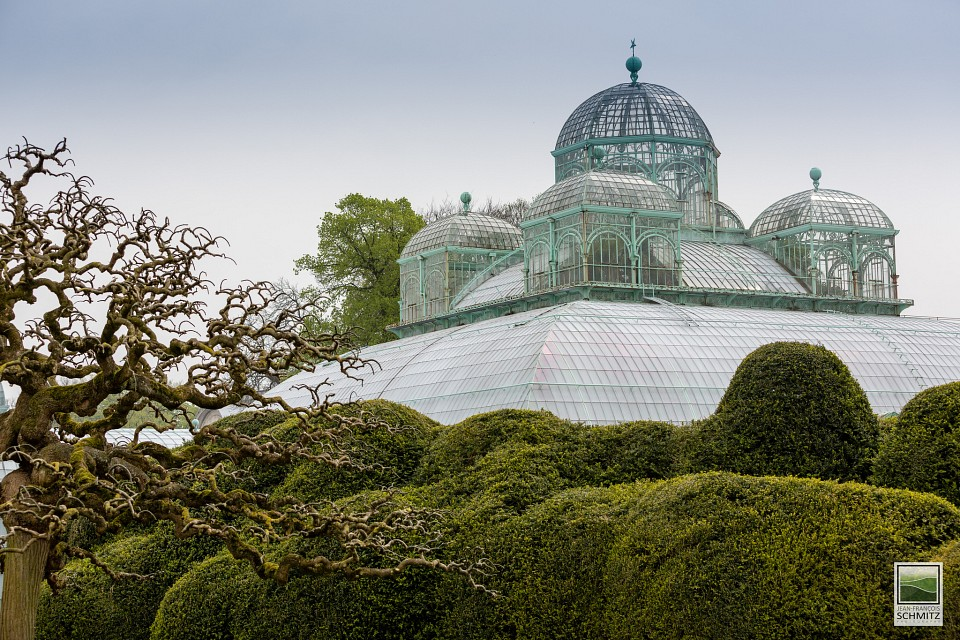 Royal Greenhouses of Laeken, Belgium - April 2012 - Royal Greenhouses of Laeken
