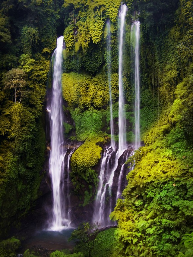 Sekumpul Waterfalls - Sekumpul Waterfall