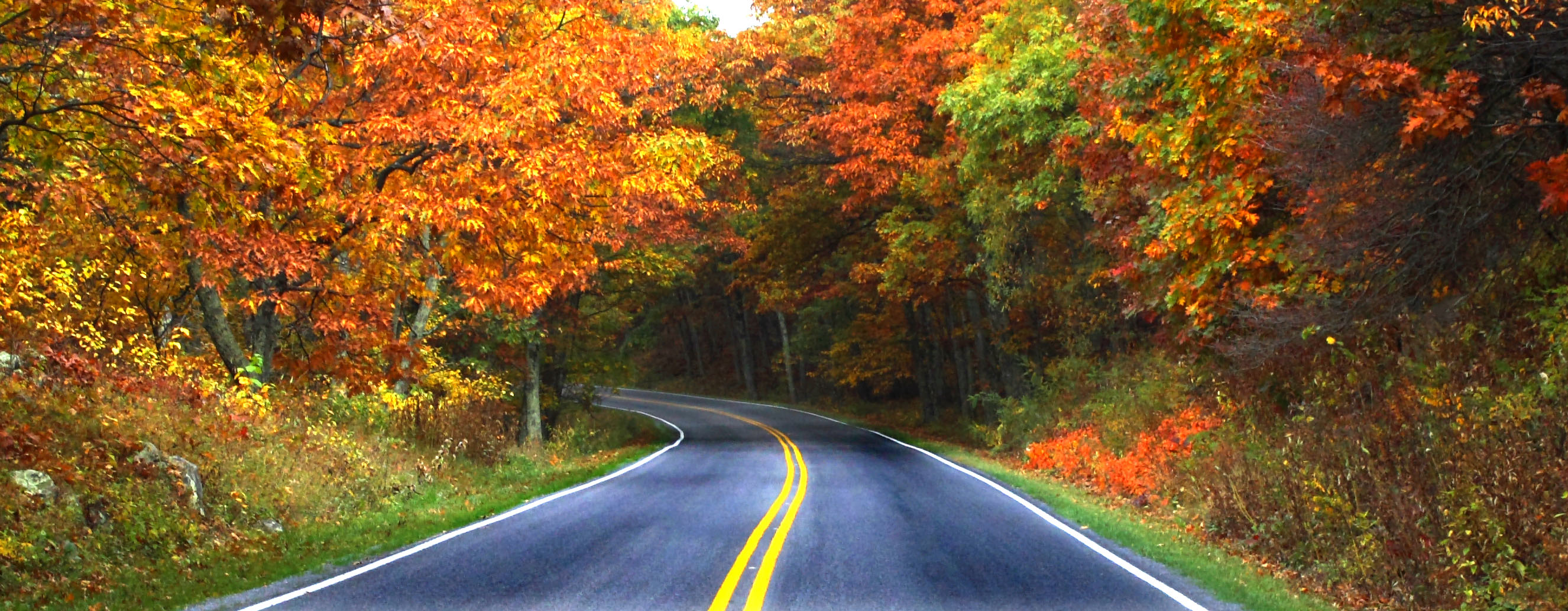 how to get to skyline drive
