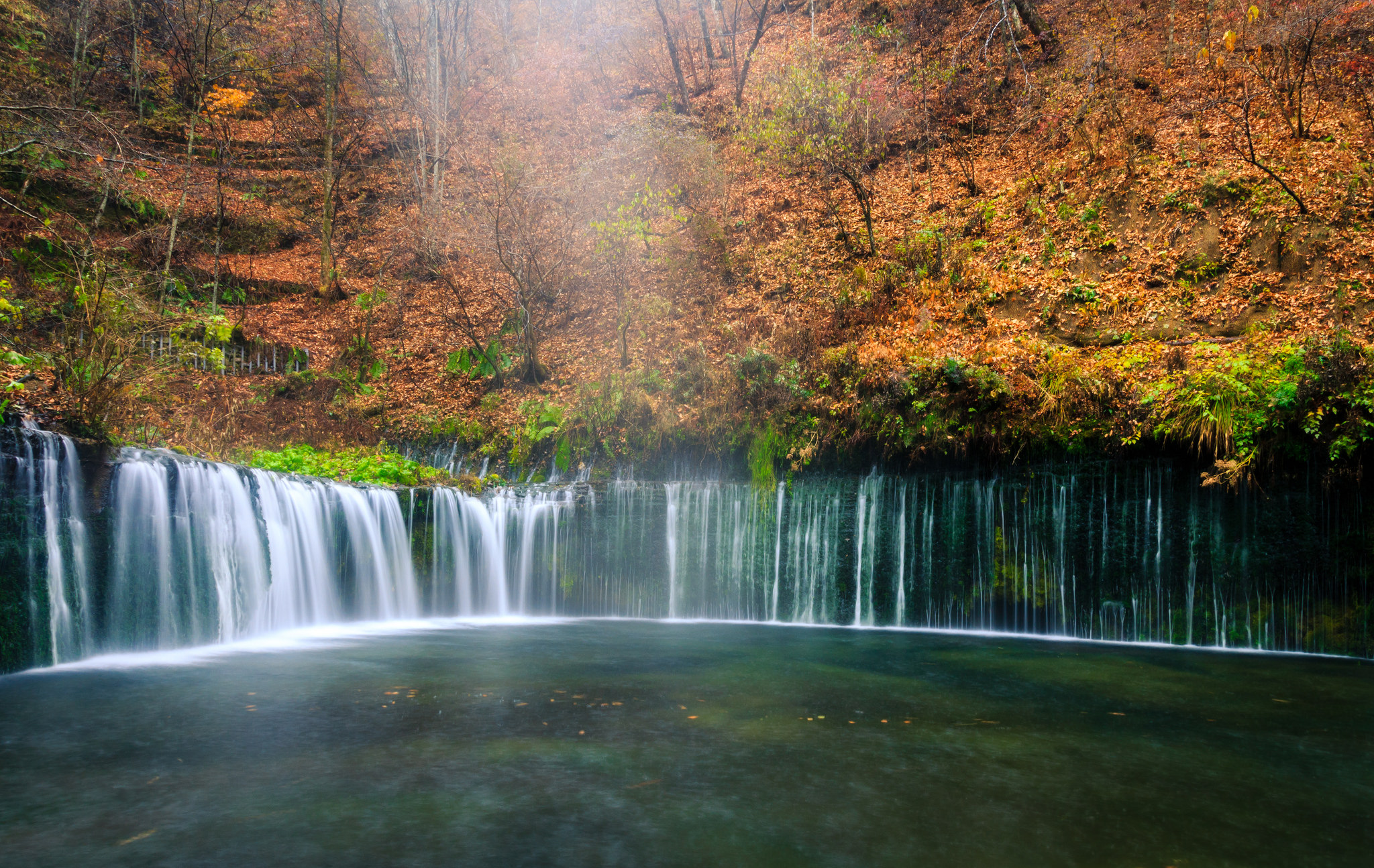Green Forest Waterfall | Pictures for my Desktop | Pinterest ...