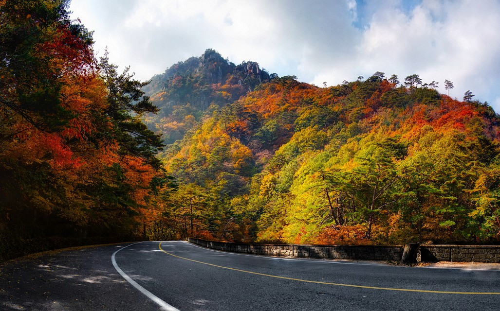 Beautiful autumn makes us feel excited more than ever - South Korea