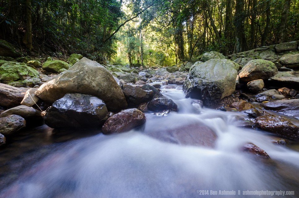 Stream In Motion, Springbrook National Park, Queensland, Australia - Springbrook National Park