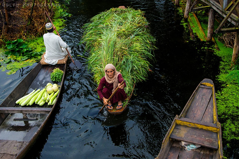 Floating Market, Dal lake - Srinagar