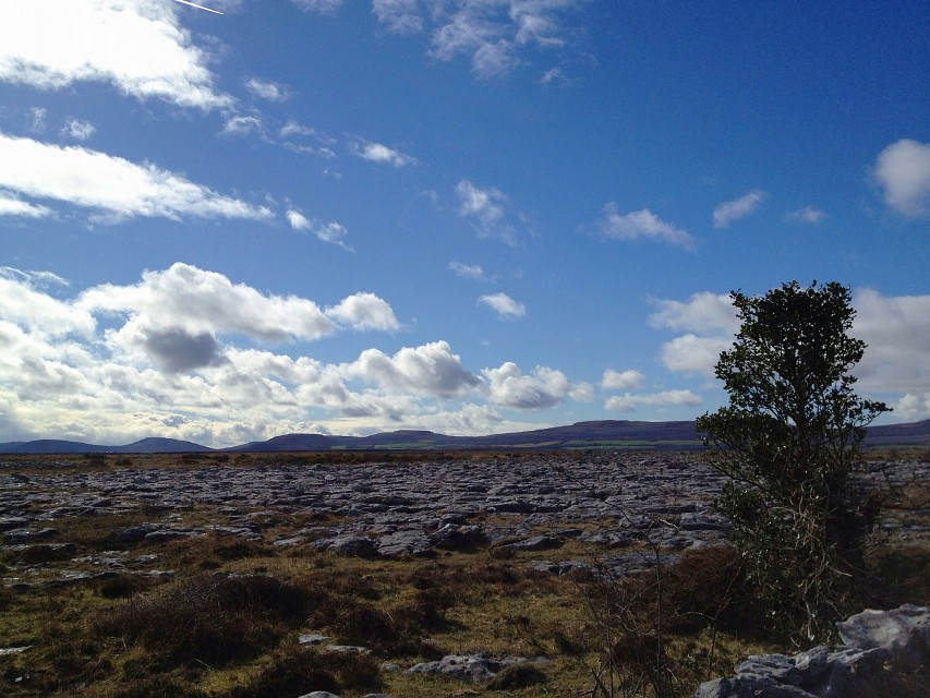 sunshine in the Burren - The Burren