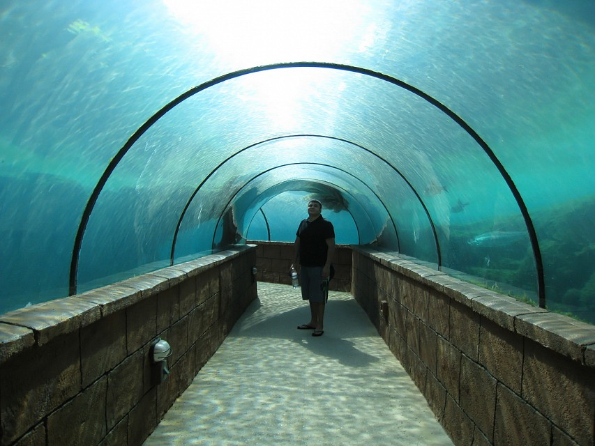 Underwater Tunnel - The Dig