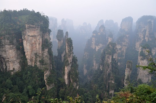 Tianzi Mountain