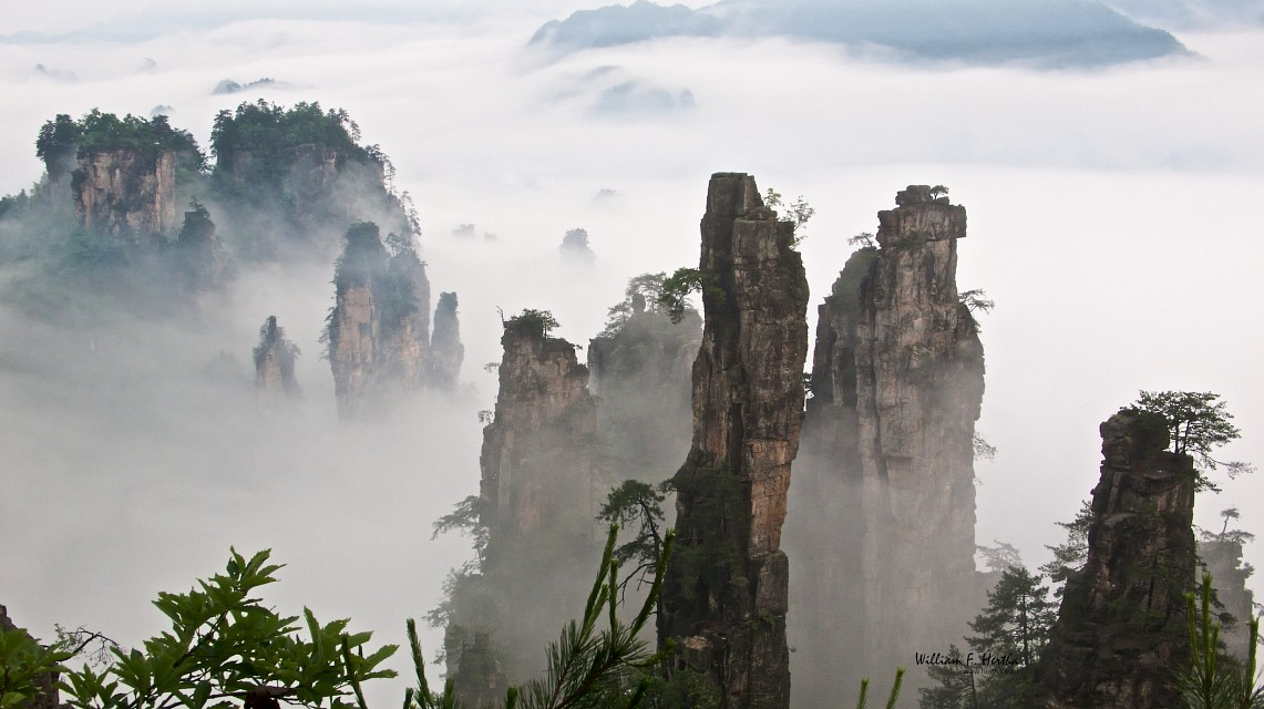 Walking through the Tianzi Mountains - Tianzi Mountain