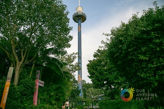 Tiger Sky Tower - Imbiah