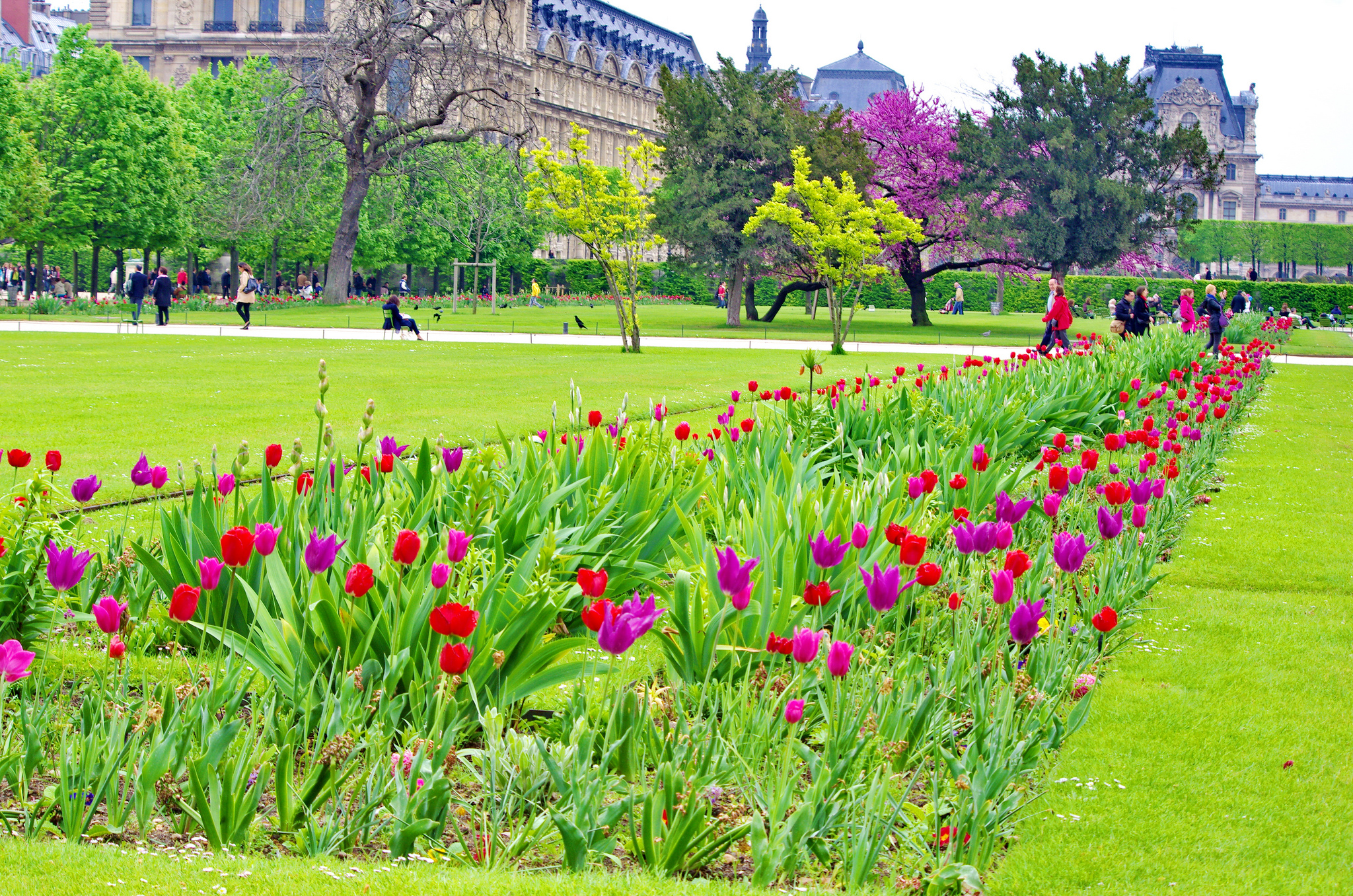 Tuileries garden urban park in paris thousand wonders for Jardin in french