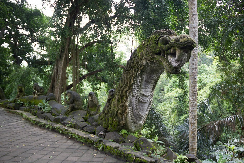 - Ubud Monkey Forest