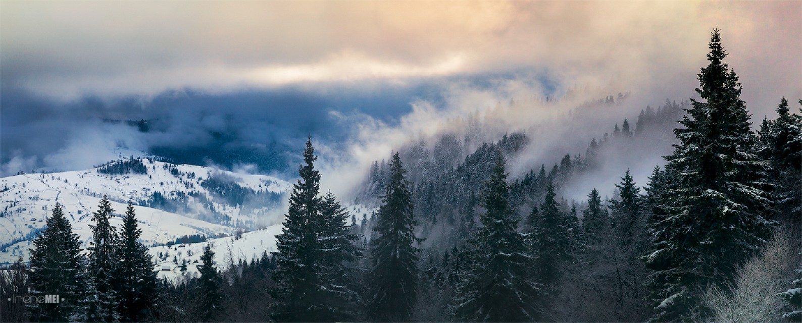 The Carpathians - Ukraine