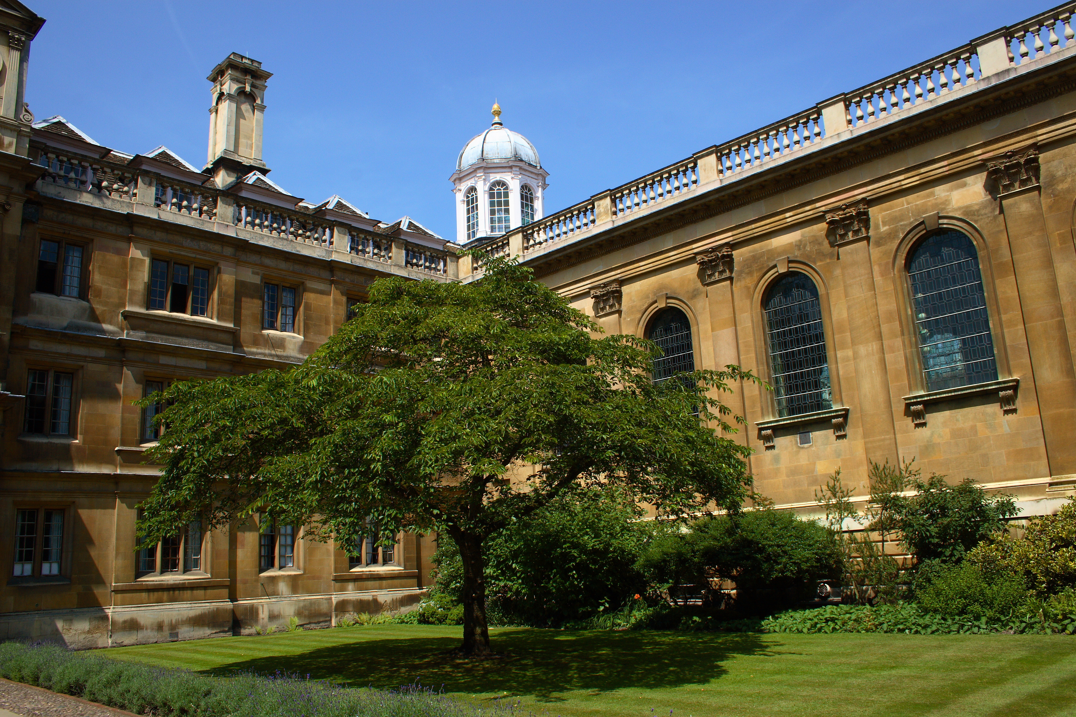 University of Cambridge to Move Lectures Online Until