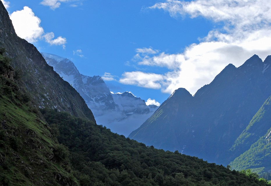 """""""Beauty of a mountain"""" - Valley of Flowers National Park"""