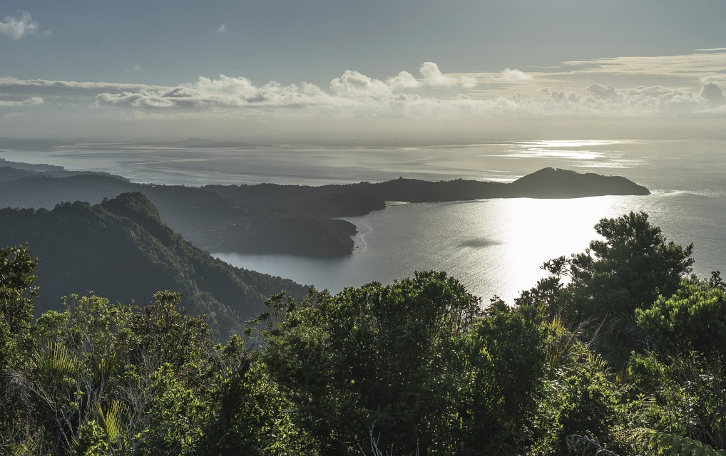 Conrwallis Peninsula, Maukau Harbor - Waitakere Ranges