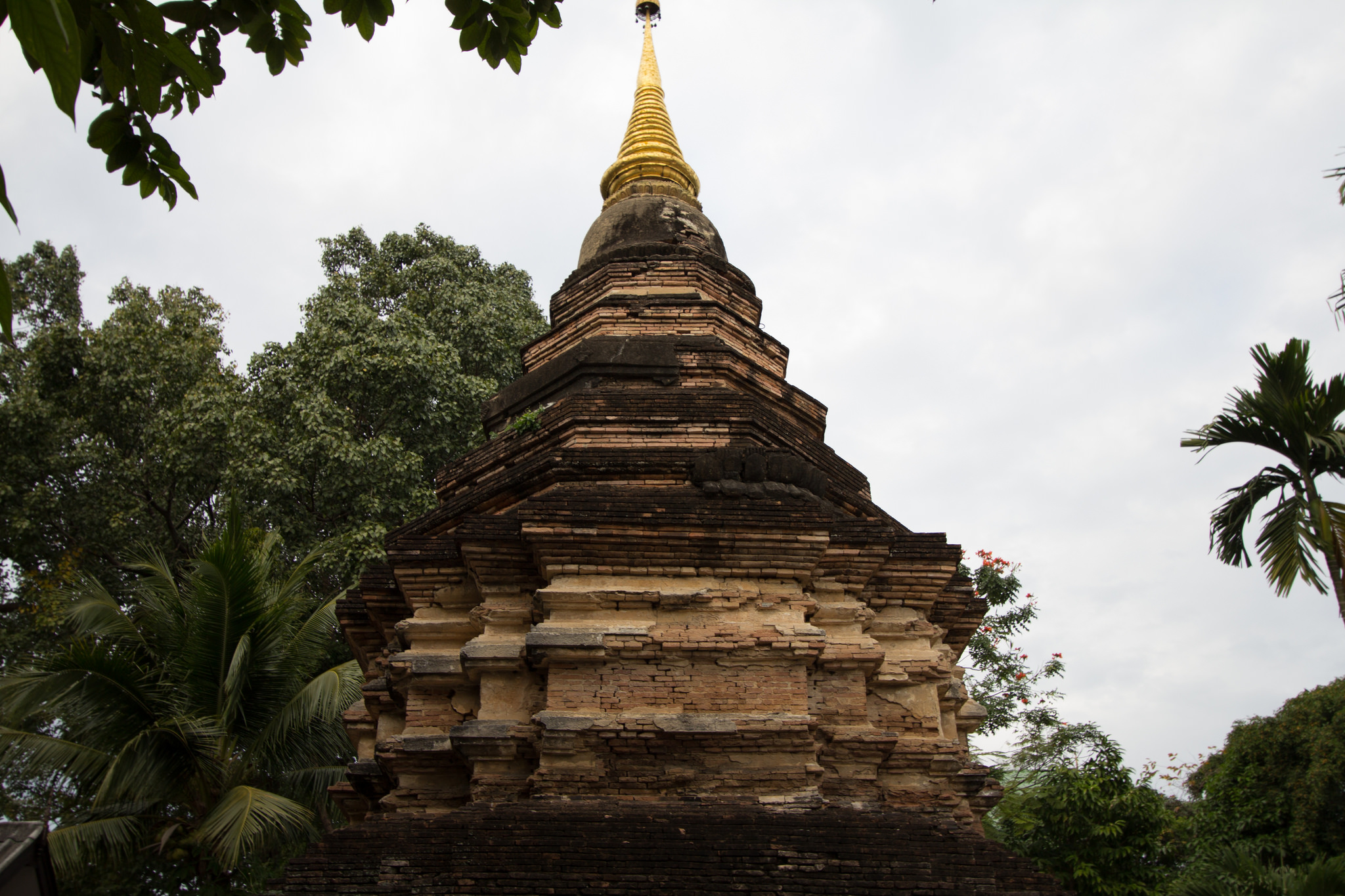 Wat Umong - Temple in Chiang Mai - Thousand Wonders