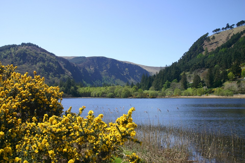 Wicklow Mountains - Wicklow Mountains