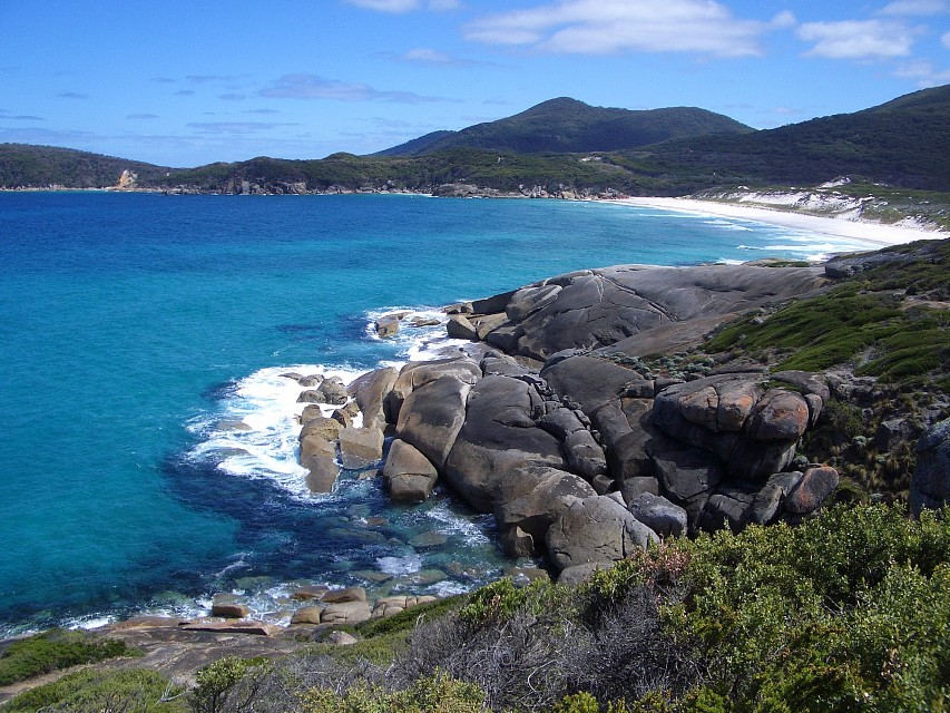 the blue ocean - Wilsons