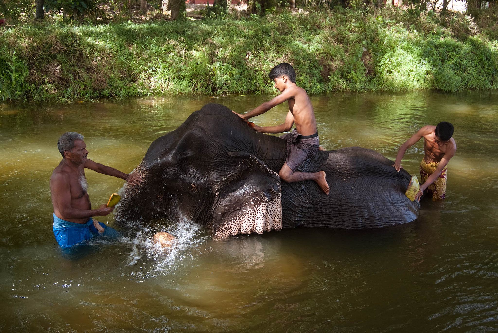 how to get to yala national park