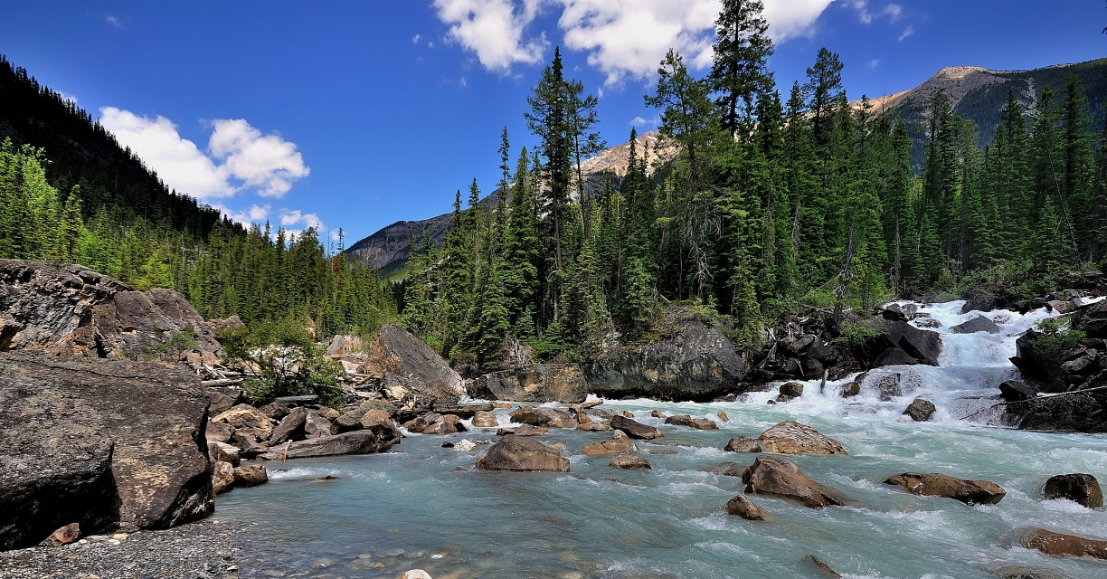 Meeting of the Waters (wide angle view) - Yoho National Park